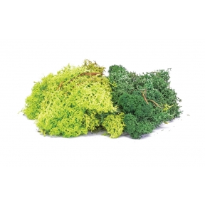 Hornby R7194 Lichen - Green Mix
