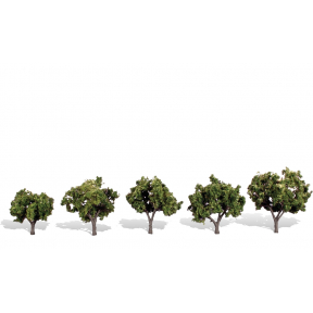Sun Kissed Tree Pack Of 5