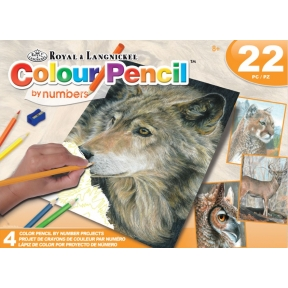 4 Colour Pencil By Numbers Projects