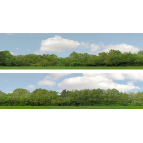 ID Backscenes ID147A 15 Inch Backscene Trees Set A