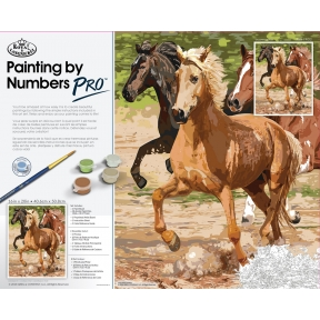 Pro Paint By Numbers Galloping