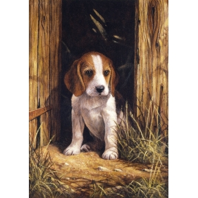 Beagle Puppy Painting By Numbers